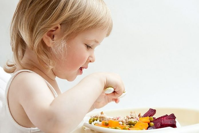 Alimentação do bebé