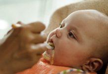 As primeiras papas para o seu bebé