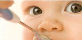 Refeições de peixe para bebé