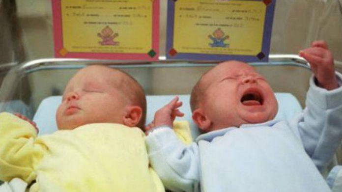 Gravidez de gémeos: os gémeos verdadeiros e os falsos