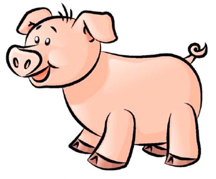 O porquinho foi á horta