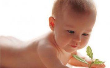 Os bebés prematuros ou a pressa de viver