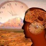 Relógio biológico do homem