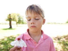Hemorragias nasais