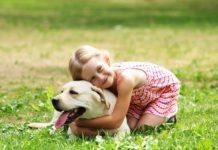 A importância dos animais de estimação para a criança