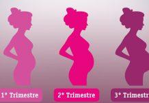 Conheça a magia de cada trimestre de gravidez