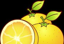 As três laranjas mágicas