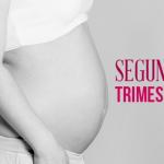2º trimestre de gravidez